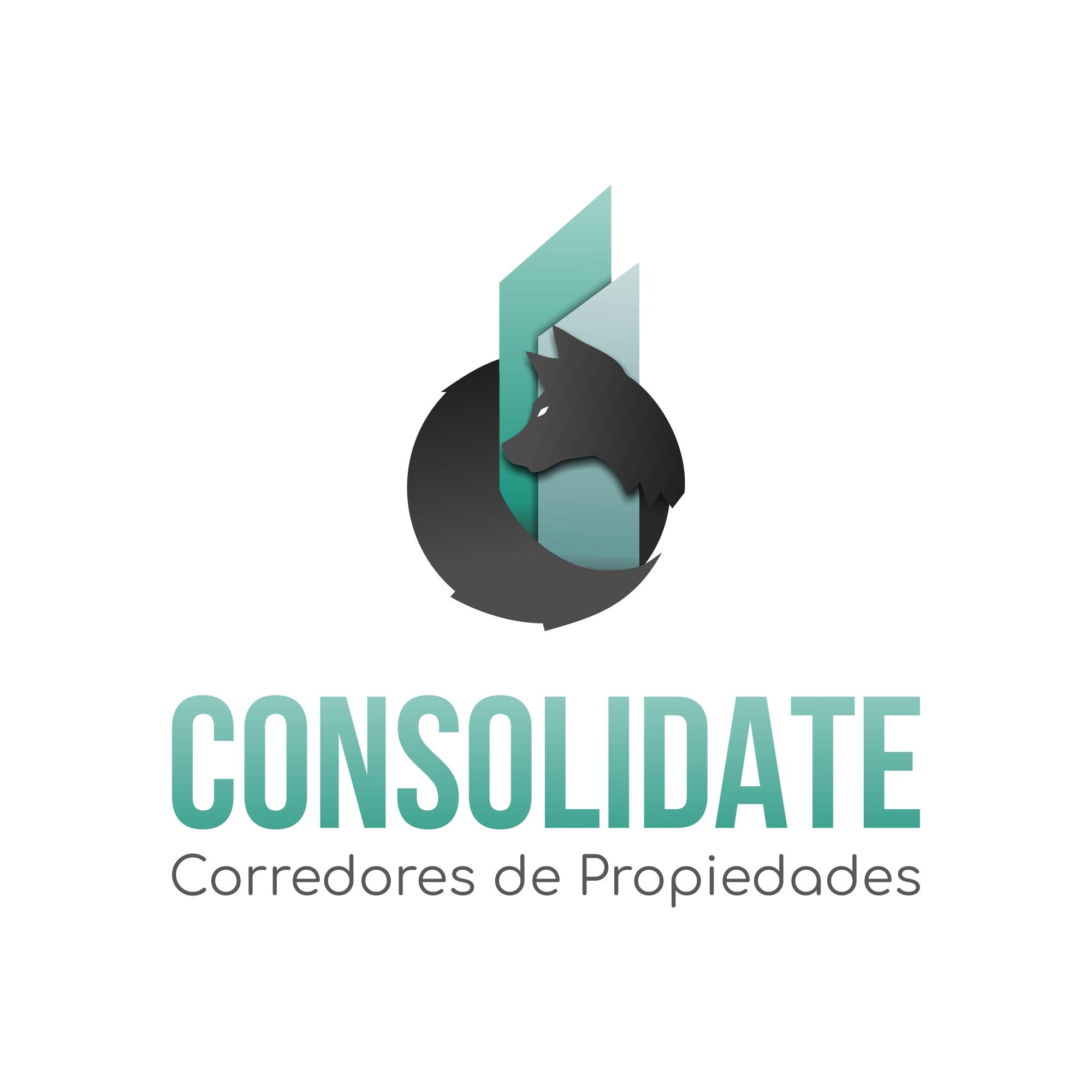 logotipo Consolidate